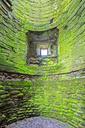 Great Britain, Scotland, Dumfries and Galloway, Caerlaverock Castle, green moss-grown wall - FOF09544