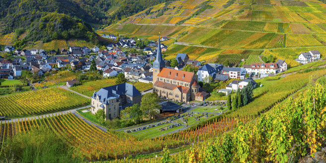 Germany, Rhineland-Palatinate, Eifel, Ahr Valley, Mayschoss, Vineyard in autumn - WGF01132