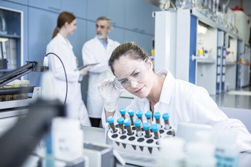 Scientist in lab examining samples - WESTF23693
