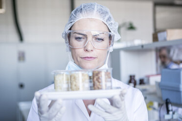 Scientist in lab holding seed samples - WESTF23753