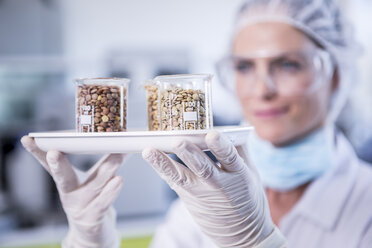 Scientist in lab holding tray with seed samples - WESTF23756