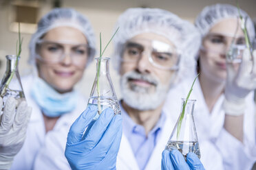 Scientists in lab holding beakers with plant seedlings - WESTF23759
