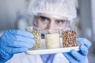 Scientist in lab examining food samples - WESTF23762