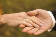 Bridal couple holding hands, showing wedding rings - FCF01304