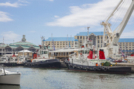 South Africa, Cape Town, Ships at the waterfront docks - ZEF14843