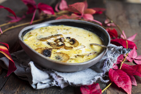 Bowl of cheese soup with leek and mushrooms - SBDF03380