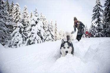 Austria, Altenmarkt-Zauchensee, young woman with dog in winter forest - HHF05531