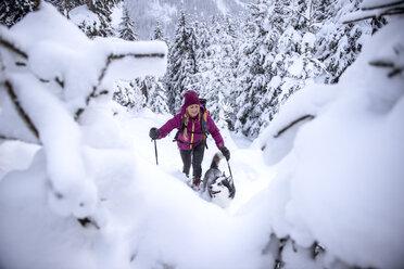 Austria, Altenmarkt-Zauchensee, young woman with dog on ski tour in winter forest - HHF05534
