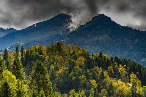 Germany, Bavaria, Upper Bavaria, Allgaeu Alps, View from Hofmannsruh near Oberstdorf to Soellereck - WGF01139