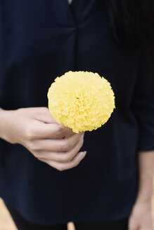 Close-up of woman holding a yellow flower - IGGF00195