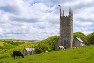 Great Britain, England, Cornwall, near Bude, Church of St Morwenna near Morwenstow - SIEF07612