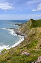 Great Britain, England, Devon, Hartland, Hartland Quay, Rocky coast, Lundy Island - SIEF07618
