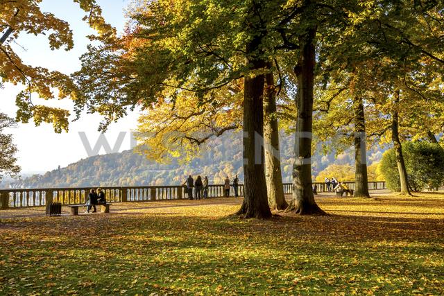 Germany, Baden-Wuerttemberg, Heidelberg, palace garden in autumn - PUF00951