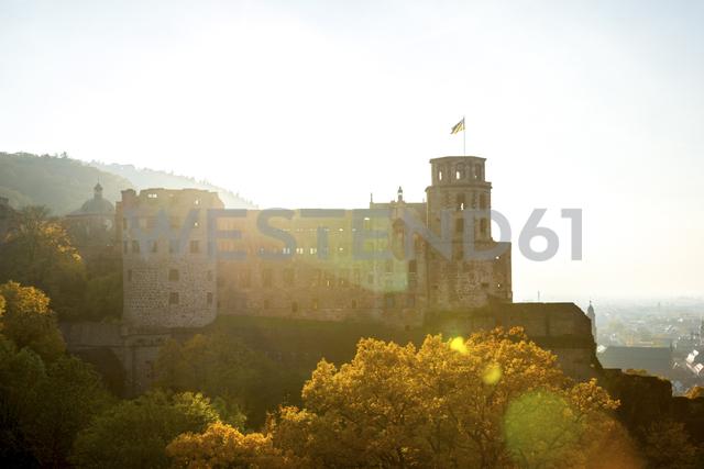 Germany, Baden-Wuerttemberg, Heidelberg,  Heidelberg Castle, ruin - PUF00954
