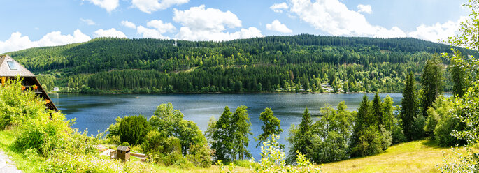 Germany, overview of Lake Titisee in the Black Forest - KIJF01719