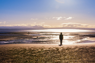 Great Britain, Scotland, Solway Firth, silhouette of female tourist standing at beach - SMAF00877