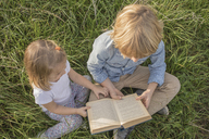 Brother and his little sister sitting on a meadow reading a book, top view - KMKF00068