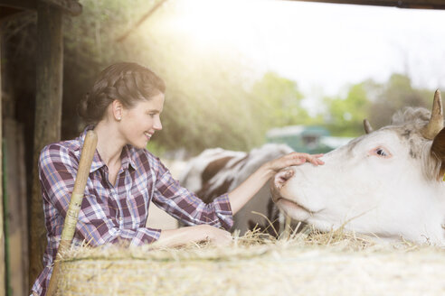 Smiling woman caring for a cow on a farm - SHKF00799