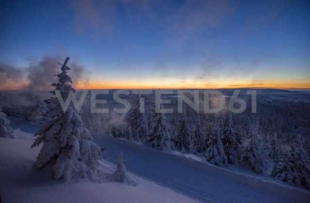 Germany, Saxony-Anhalt, Harz National Park in winter in the evening - PVCF01190