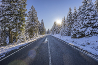 Germany, Lower Saxony, Harz National Park,  country road in the morning - PVCF01196