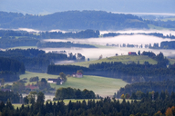 Germany, Bavaria, Upper Bavaria, Allgaeu, Pfaffenwinkel, View from Auerberg near Bernbeuren, morning fog - SIEF07635