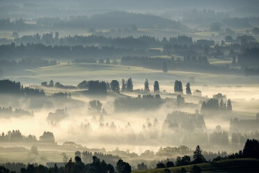 Germany, Bavaria, Upper Bavaria, Allgaeu, Pfaffenwinkel, View from Auerberg near Bernbeuren, morning fog - SIEF07644