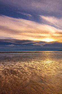Great Britain, Scotland, Solway Firth, mud flats, sunset - SMAF00887
