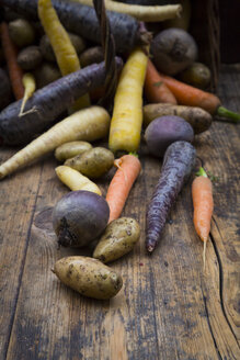 Winter vegetables, carrot, beetroot, potato and parsnip - LVF06477