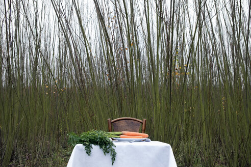 Dinner for one, laid table, bunch of carrots - PSTF00060