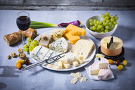 Cheese Platter, cheddar, tete de moine, gorgonzola, goat cheese, french sheep cheese, butter cheese, blue cheese, processed cheese with walnut, pepper cheese, hand cheese, gouda, parmesan - MAEF12468