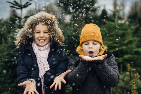 Brother and sister having fun with snow before Christmas - MJF02234