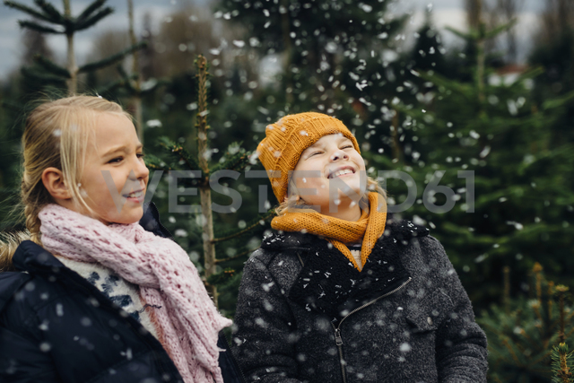 Brother and sister having fun with snow before Christmas - MJF02237