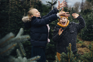 Brother and sister having fun with snow before Christmas - MJF02240