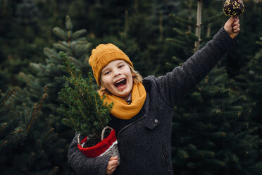 Happy boy preparing for Christmas , holding potted tree, eating chocolate dipped apple - MJF02246