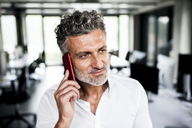 Portrait of mature businessman on cell phone in office - HAPF02542