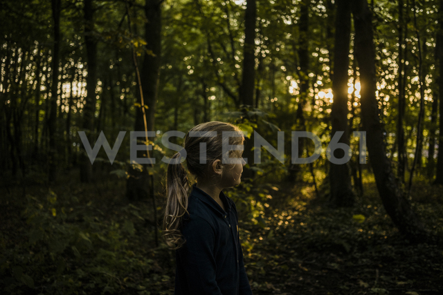 Girl in a forest at sunset - MOEF00576 - Robijn Page/Westend61