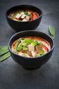 Bowls of red Thai Curry with snow peas, carrots, bell pepper, spring onions and smoked tofu - LVF06531