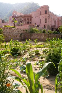 India, Rajasthan, Alwar, Heritage Hotel Ram Bihari Palace - NDF00712