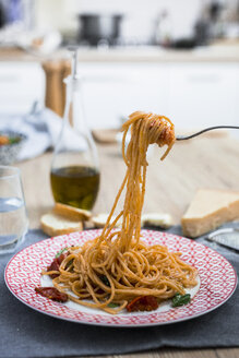 Spaghetti with cherry tomatoes and basil on a plate - GIOF03723