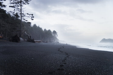 USA, Washington State, Olympic National Park, Seastack at Rialto beach - STCF00366