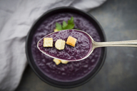 Red cabbage soup on spoon, garnished with croutons - LVF06570