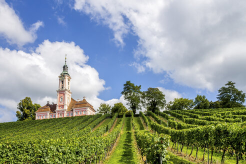 Germany, Baden-Wuerttemberg, Uhldingen-Muehlhofen, Birnau, Basilica and vineyard - PUF01044