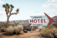 USA, California, Joshua Tree, old motel sign - WVF00850