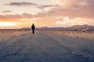 USA, California, Joshua Tree, young guy walks along a road while sunset - WVF00856