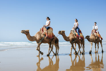 Morocco, Tanger, group of friends riding camels on the beach - KIJF01797