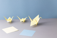 Origami, cranes and paper - CMF00761