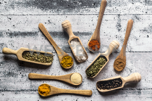 Spicies, curry, chilli, cinnamon, curcuma, garlic, parsley, oregano, salt and pepper on wooden spoons - SARF03464