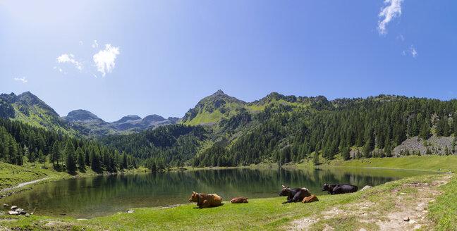 Austria, Styria, Schladming Tauern, View of lake Duisitzkarsee near Schladming - WWF04119