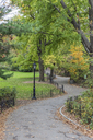 USA, New York City, Manhattan, Central Park - RPSF00137