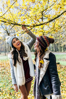 Two pretty women having fun in an autumnal forest - MGOF03700